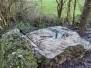 1665 - Bivouac hivernal dans nos Ardennes